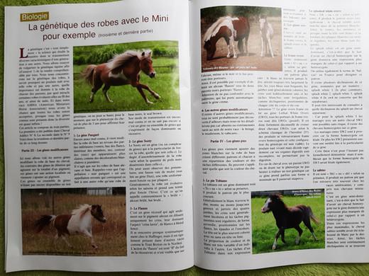 Article_robes_3ème_partie.jpg