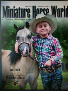 Couverture e_magazine AMHA France.JPG