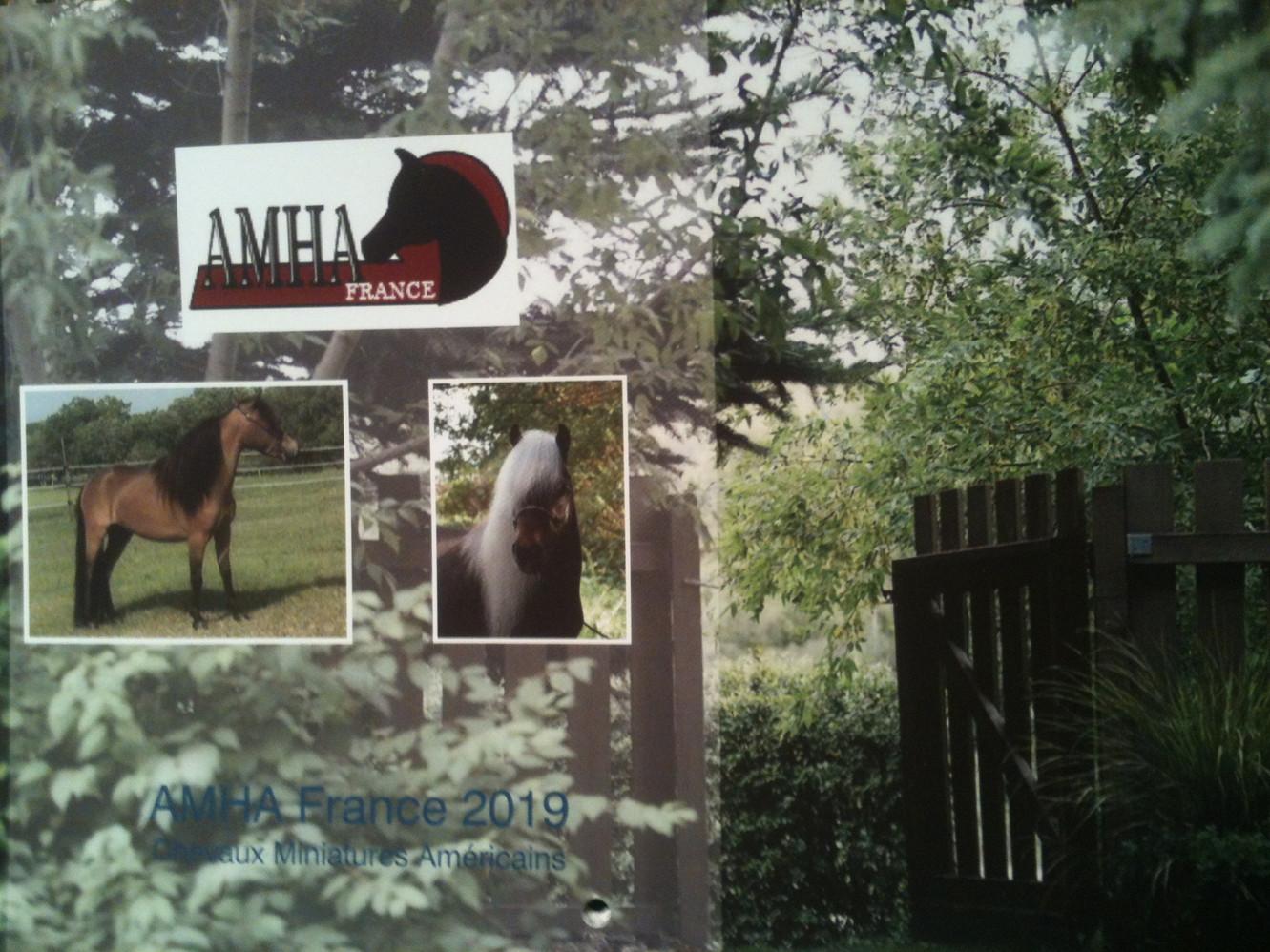 Calendriers AMHA France 2019
