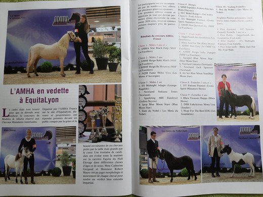 Article concours 2019.jpg