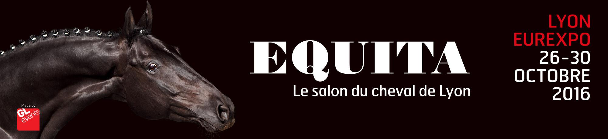 Affiche Equitalyon 2016.jpg