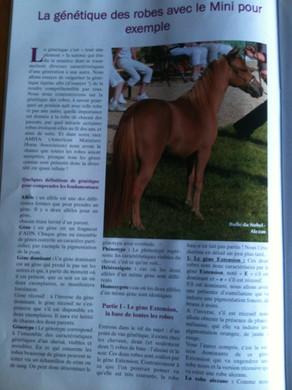 Article_Génétique_des_robes_partie_1.JPG