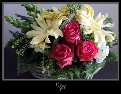 flower256.jpg