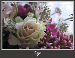 flower203.jpg