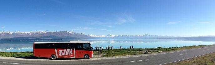 Stray Bus South Island New Zealand