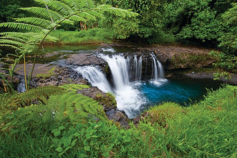 Waterfall © David Kirkland