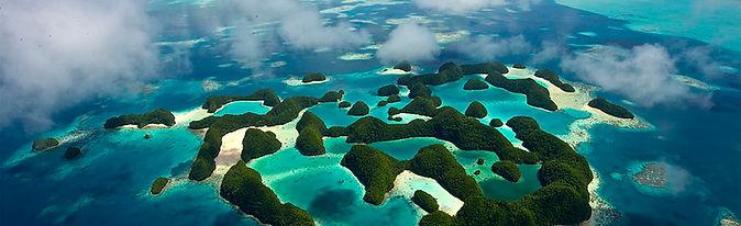 Palau aerial - Fish'n Fins