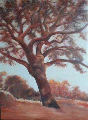 """""""arbre de vie"""""""