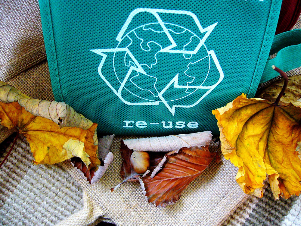 Reusable bag and leaves