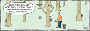 Comic strip with maple tree and man tapping tree