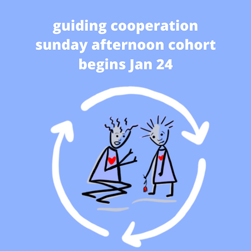 Guiding Cooperation Sunday Winter 2020
