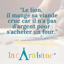 phrase_lion.png