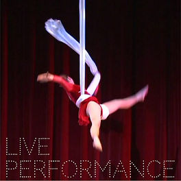 We offer live performance and theatrical shows.