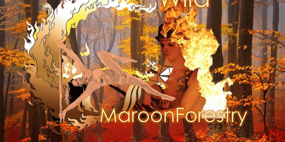 Wild Maroon Immersive Show