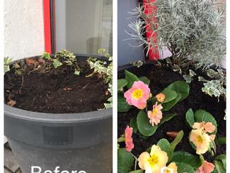 Gardening Club Update - February