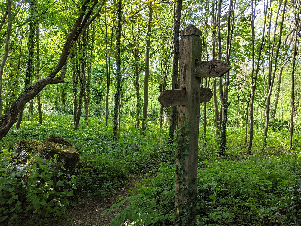 A footpath sign points into a woodland