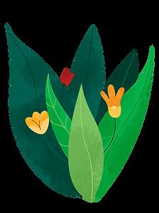 Plant_bush_flowers_edited_edited_edited_