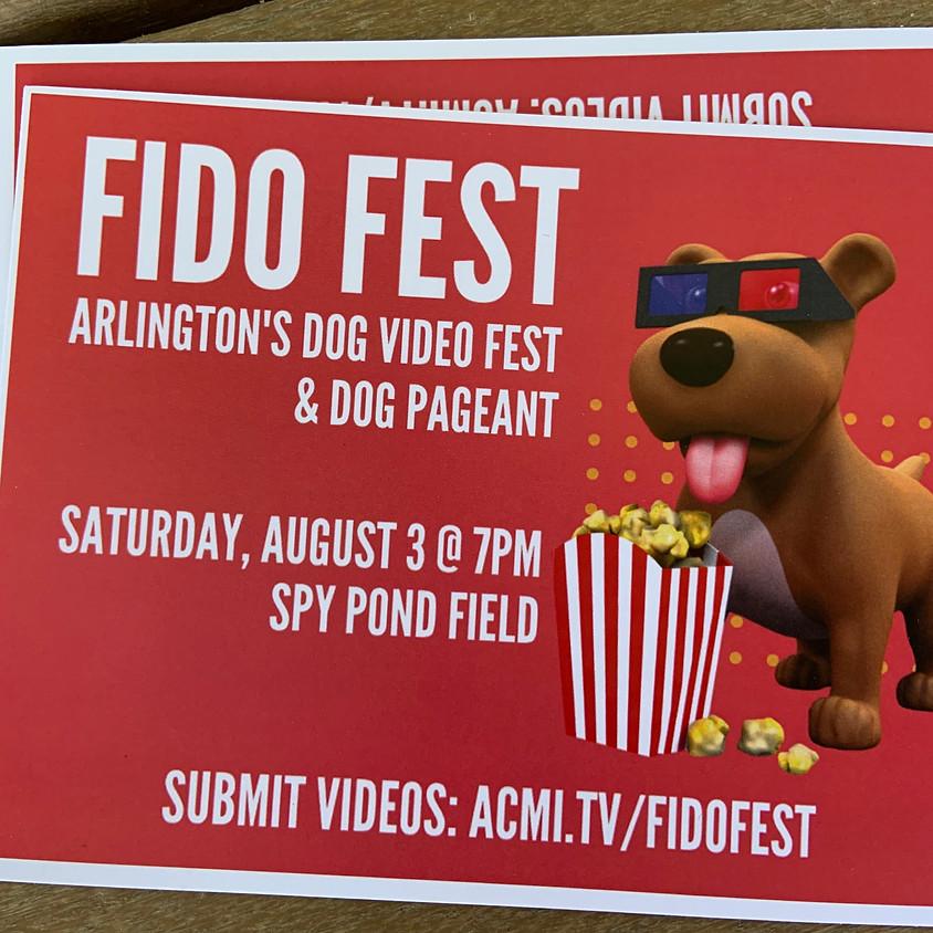 Fido Festival in Arlington