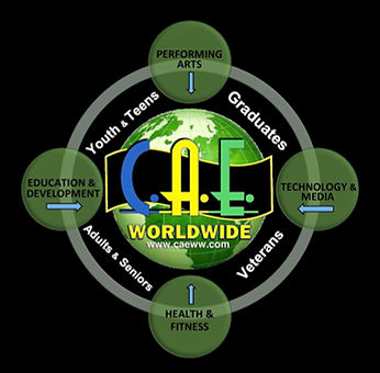CAE Worldwide Divisions