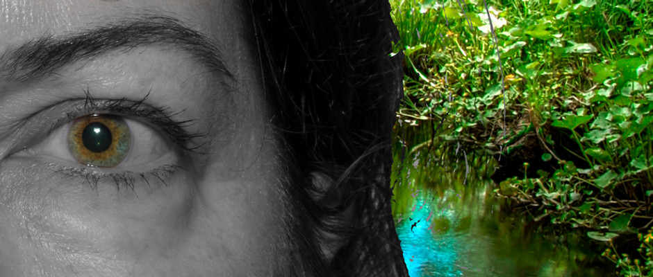 Eyes Project