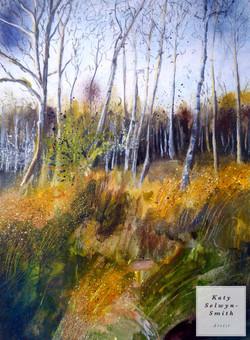 Mid Winter Wisley Common