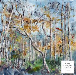 Thursley Winter Birches
