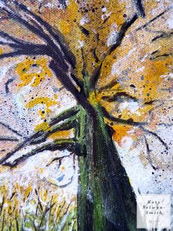 Sacred tree Autumn