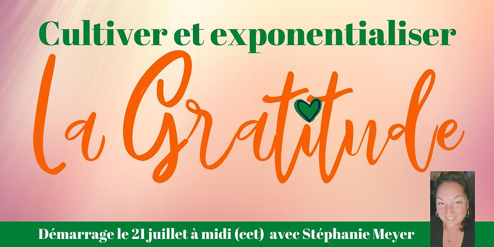 Cultiver et exponentialiser - La Gratitude - 6 rendez-vous + 1h00 de call