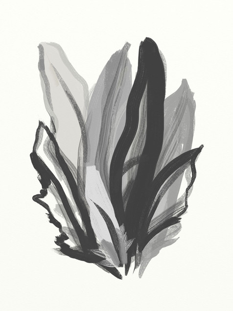 Abstract Feathers