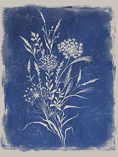 Brushed Botanical Blue