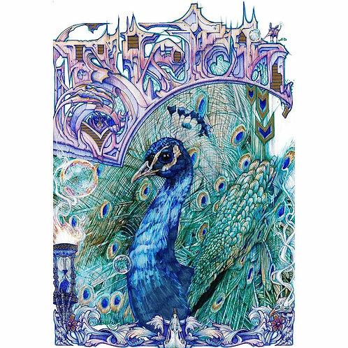 "Sketch Peacock, 8x10"" or 11x14"" High Quality Giclee art print by Alex Dakos"