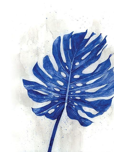 Indigo Tropical Leaf