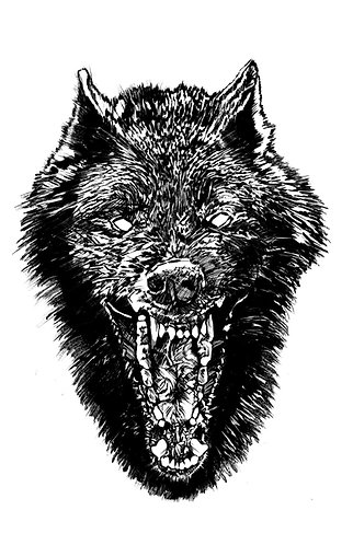 "Black Wolf, 8x10"" or 11x14"" High Quality Giclee art print by Alex Dakos"