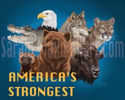 America's Strongest