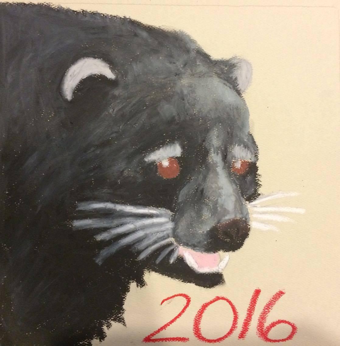 Bearcat Graduation Cap