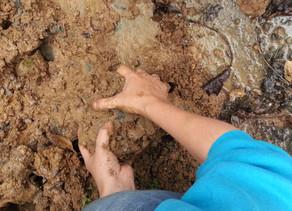 Çamur sevgimiz devam ediyor(muş)… Still in love with the mud!