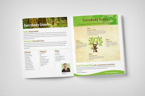 Krips Brochure