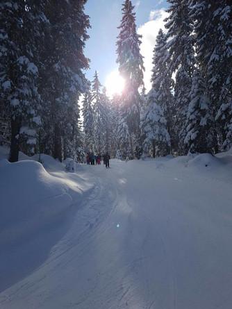 Sortie ski de fond - Primaires