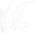 logo-vert-tige-blanc.png