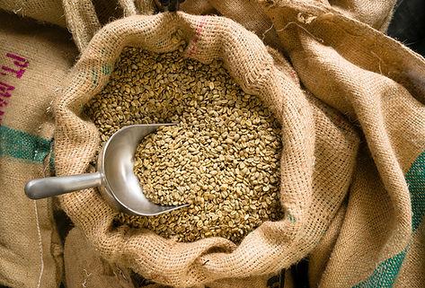 raw-coffee-seeds-bulk-scoop-burlap-bag-P