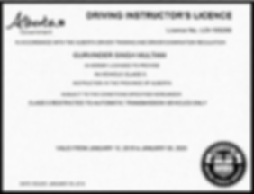 Driving Instructor - Licence