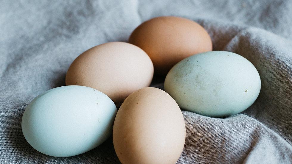 Free Range Eggs - 1 dozen
