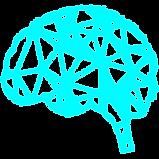 brain_cian_2.png