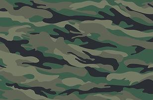 Military Background by Slidesgo.jpg