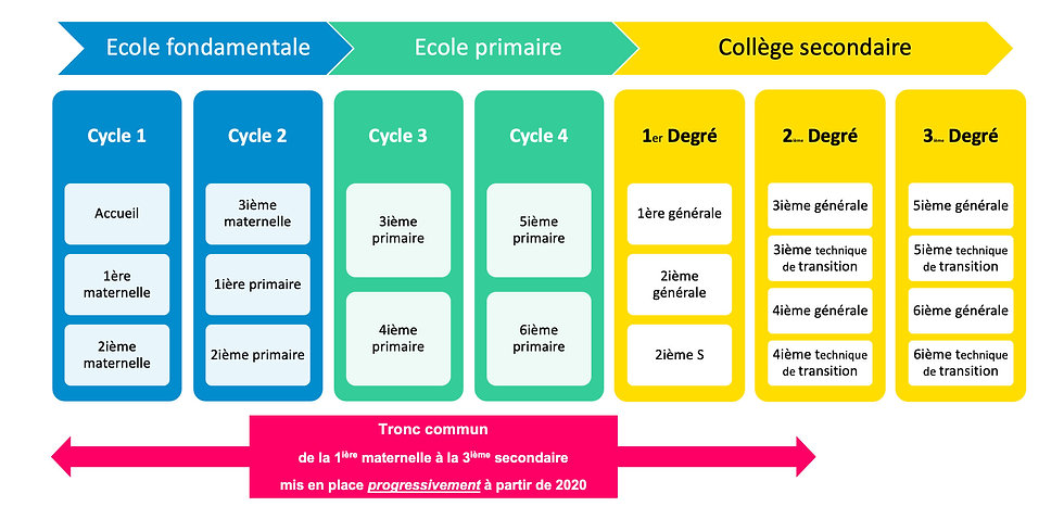 groupe_scolaire_cycles_degres.jpg