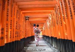 Red Torii Shrine Gates at Hie-Jinja