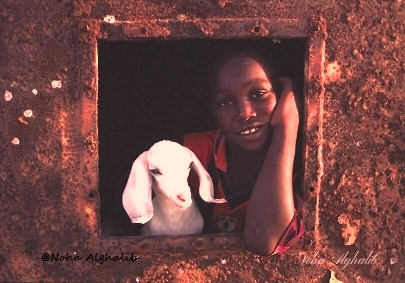 (Love & Innocence) Yasser is shepher