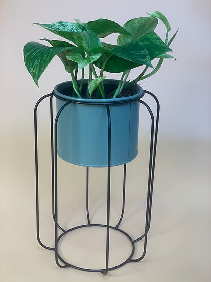 Anora Plant Stand Green