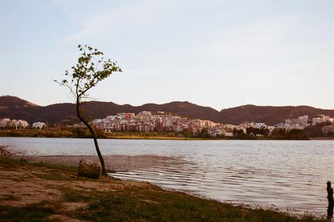Lake of Tirana