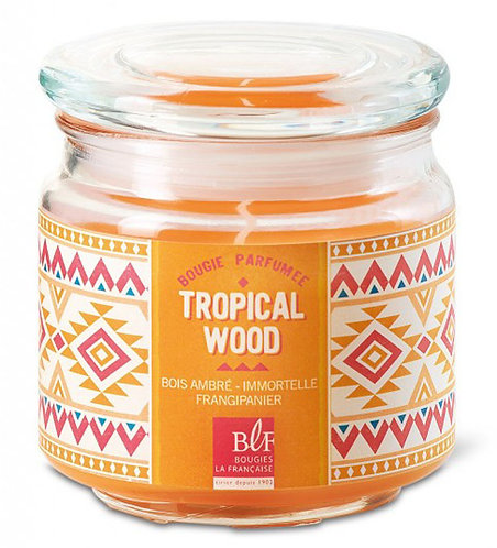Amber wood grapefruit frangipani scented candle Jar Bougies La Francaise